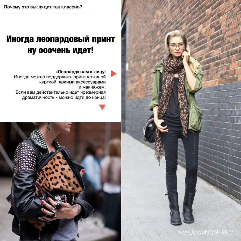 Леопард.004
